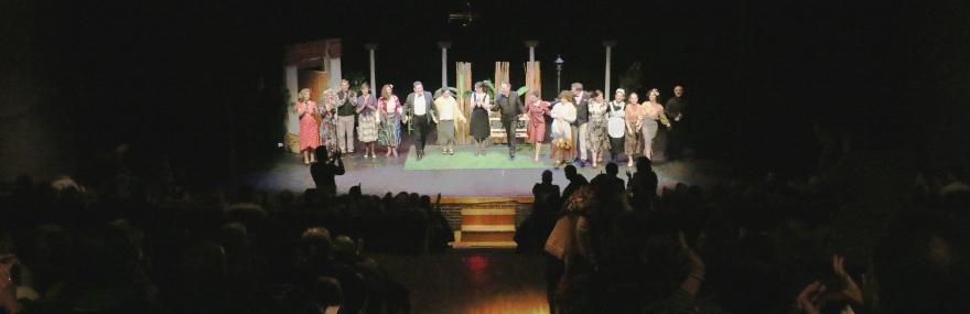 El Grupo de Teatro completa el aforo en una representación solidaria en el teatro del Zaidín-media-1